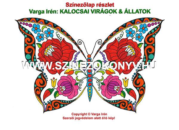 pillangó kalocsai színező
